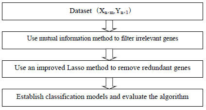 Feature Selection Algorithm Based on Mutual Information and Lasso