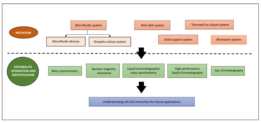 Co-Culture Systems for the Production of Secondary Metabolites