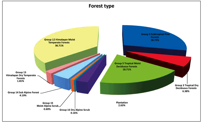 Natural and Anthropogenic Impacts on Forest Structure: A