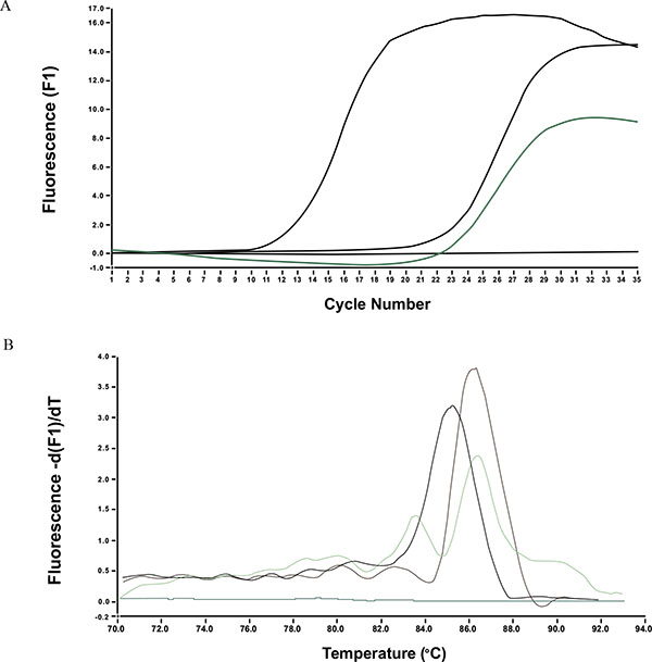 Utility of Molecular Identification and Quantitation of