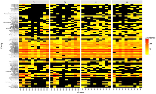 Composition of Intestinal Microbiota in Two Lines of Rainbow Trout