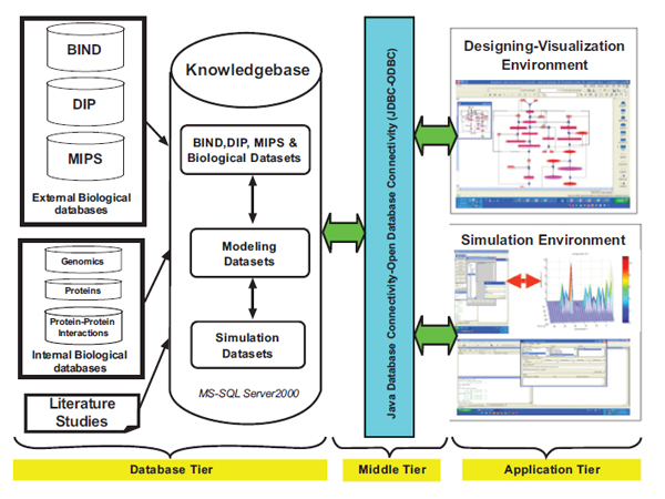 Systems Biology Approach for Mapping TNFα-NFκB Mathematical Model to