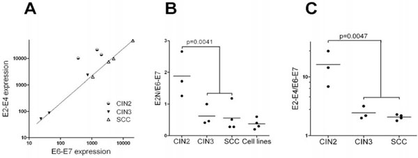 Loss of HPV16 E2 Protein Expression Without Disruption of