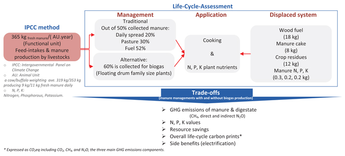 Trade-offs between Manure Management with and without Biogas